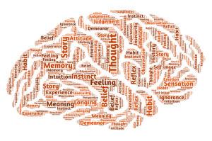 branding-brain-graphic-the-toronto-web-company