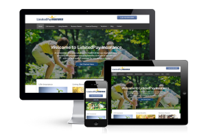 limited-pay-insurance-website-display-by-the-toronto-web-company